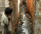 Slum Conditions