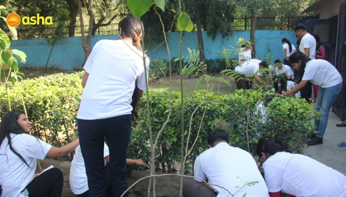 The Macquarie team brought in 40 seeds and made a successful tree plantation drive.
